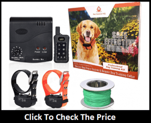 Electric Dog Fence With Remote Trainer