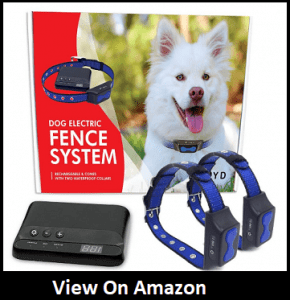 Floyd Invisible Fence for Dogs