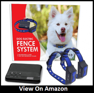 Invisible Perimeter Fence Prevents Pets