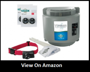 The 15 Best Wireless Electric Dog Fence Systems Reviews 2019