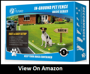 Radio Wave Electric Dog Fence System