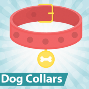 Best Anti Bark Collars
