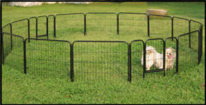 How to build temporary dog fence