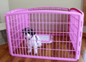 IRIS Exercise Panel Pet Playpen