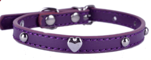 PAW Purple Prong Collar For Small Dogs