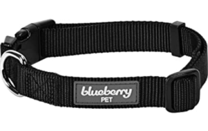 Blueberry Personalized Seatbelts Collar