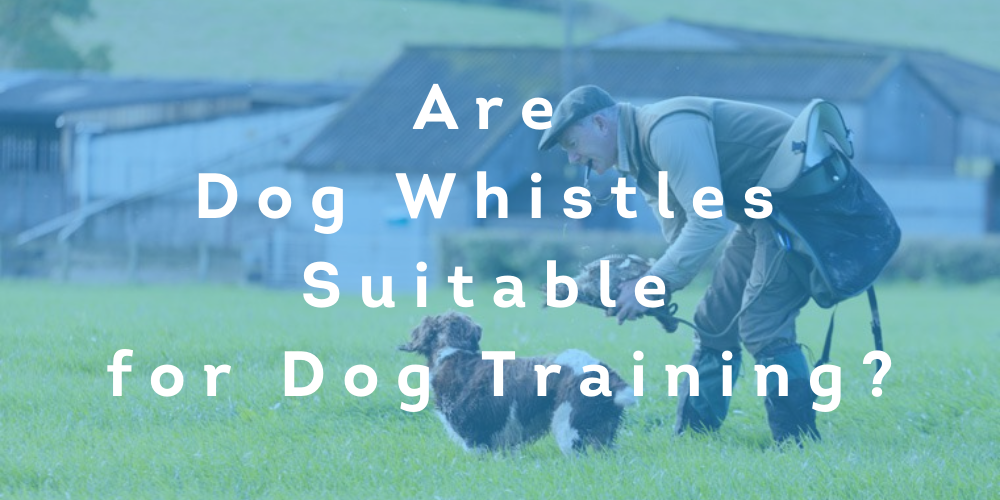 Are Dog Whistles Suitable for Dog Training?